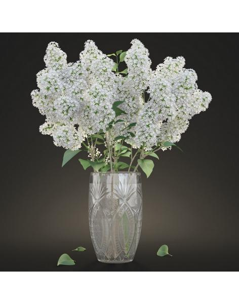 Bouquet of 51 white lilacs: delivery of flowers in