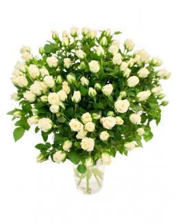 Bouquet of 101 white spray roses | 101 flowers flowers