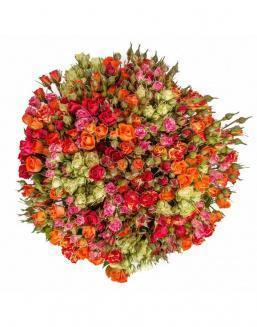 Bouquet of 51 spray roses | Flowers to women flowers