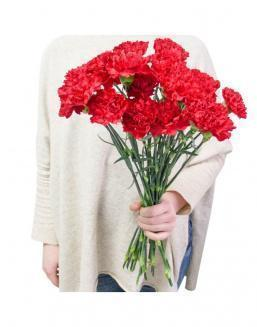 Bouquet of 25 red dianthus | Flowers for Funerals flowers