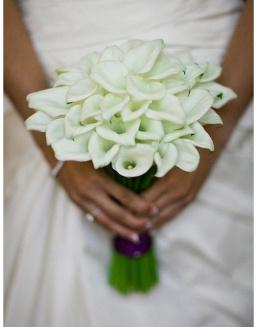 Bouquet of 25 white callas | 25 flowers flowers