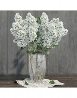 Bouquet of 15t white lilac | 15 flowers flowers