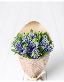 Bouquet of 25 hyacinths | 25 flowers
