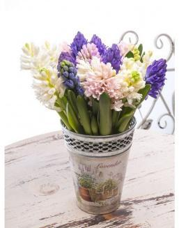 Bouquet of 15 hyacinths | 15 flowers flowers