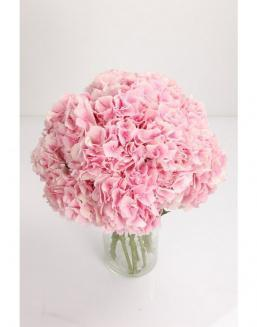 Bouquet of 25 pink hydrangeas | 25 flowers flowers