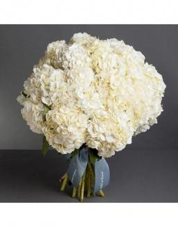 Bouquet of 15 white hydrangeas | 15 flowers flowers