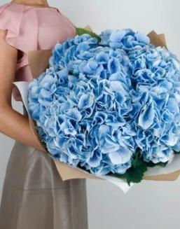 Bouquet of 25 blue hydrangeas | 25 flowers flowers
