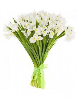 Bouquet of 25 white irises | 25 flowers flowers