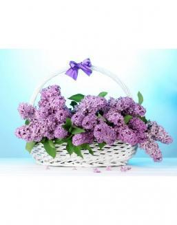 Bouquet of 15 violet lilac | 15 flowers flowers