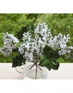Bouquet of 25 white lilac | 25 flowers flowers