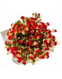 Bouquet of 101 red rose bushes | 101 flowers flowers