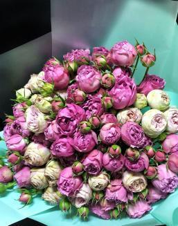 Bouquet of 15 pink spray roses | 15 flowers flowers