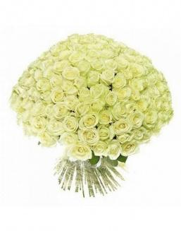 Bouquet of 51 white holland roses | Dutch roses flowers