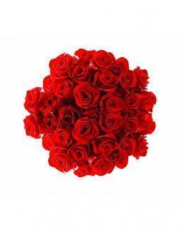 Bouquet of 25 red roses | Dutch roses flowers