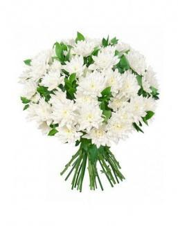 Bouquet of 15 chrysanthemums | 15 flowers flowers