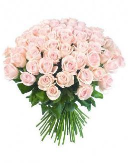 Bouquet of 51 pink Dutch roses | Dutch roses flowers