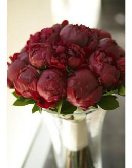 Bouquet of 15 claret peonies | 15 flowers flowers