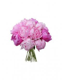 Bouquet of 15 pink peonies | 15 flowers flowers