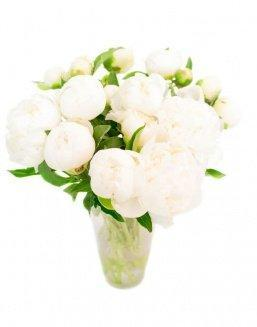 Bouquet of 15 white peonies | Flowers to friend flowers