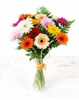 Bouquet of 25 bright gerberas | 25 flowers flowers