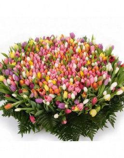 Mix bouquet 501 tulips | 501 green flowers