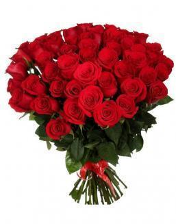 33 long red roses deluxe | Dutch roses flowers