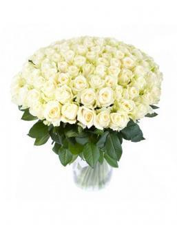 77 high elite white roses | Dutch roses flowers
