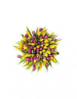 Mix bouquet 201 yellow and violet tulips | Yellow flowers