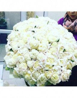 The dream embodiment a bouquet of 151 peonies | Flowers to women flowers